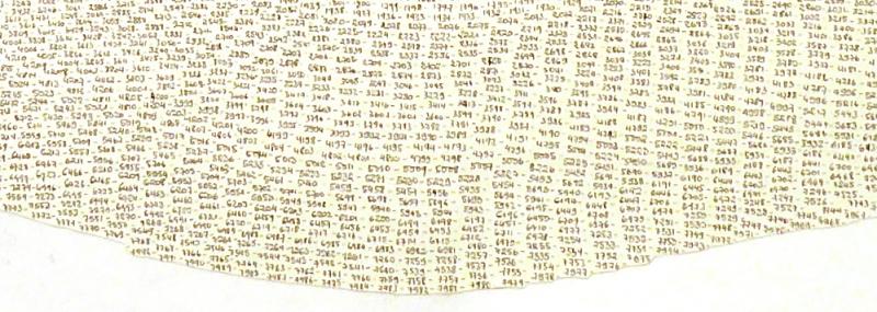 #7992 | Encre sur papier (détail)